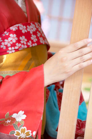 yui: Geisha Stock Photo