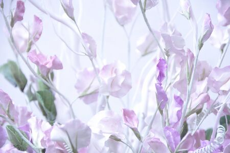sundry: Flower arrangement Stock Photo