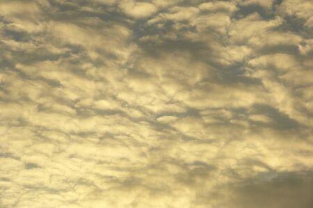 golden: Golden clouds