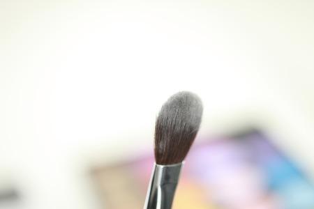 cleansed: Brush