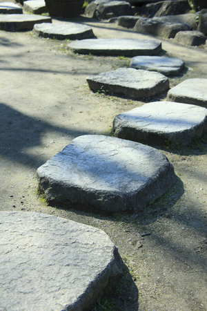 stepping on: Stepping stones