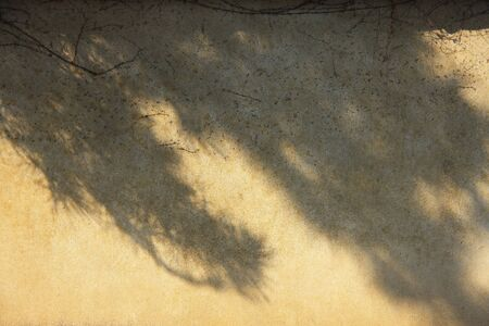 earthen wall: Earthen wall and the shadow of the tree Stock Photo