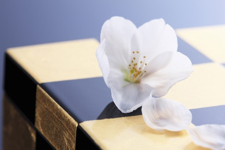 Cherry blossoms and Japanese plates Stock Photo
