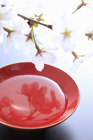 grail: Cherry blossoms and the Grail Stock Photo