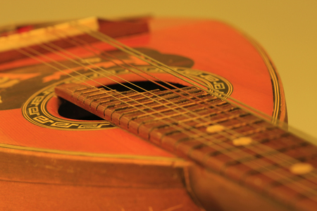 mandolino: Mandolin