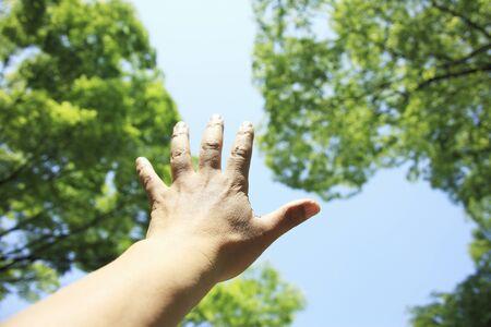 arm: Arm Stock Photo