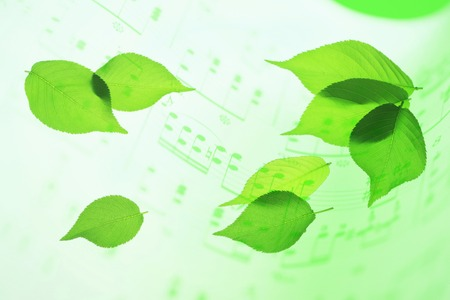 melodic: Sheet music and fresh green Stock Photo