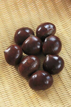 gustatory: Chestnut