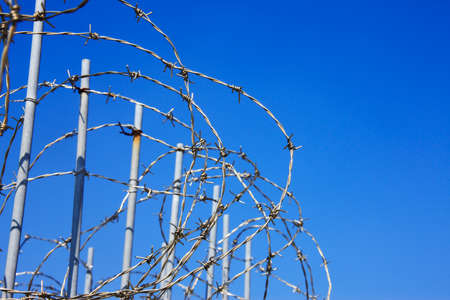 barbed wire fences: Wire: barbed Stock Photo