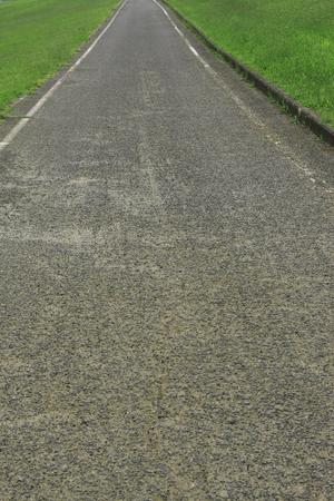 straight path: Road