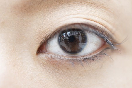 eyelids: Female eyes