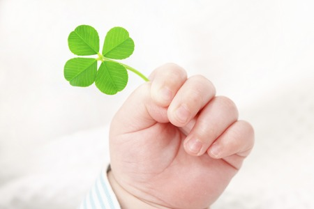 Four-leaf clover and the hands of the baby