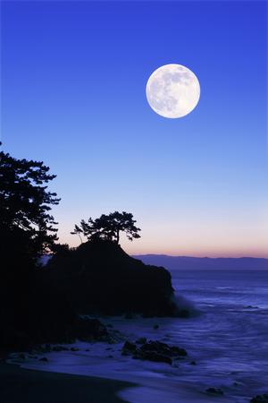 桂と合成の月