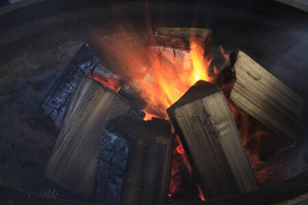 ajonjol�: fuego de s�samo