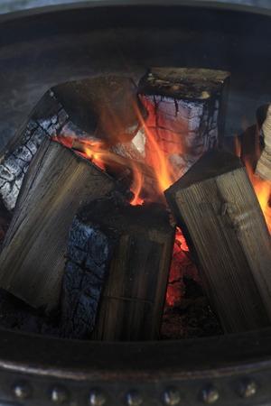 ajonjol  : fuego de sésamo