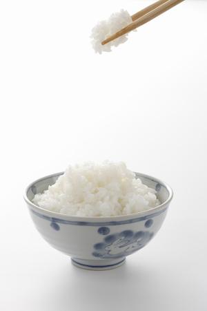 炊きたてご飯