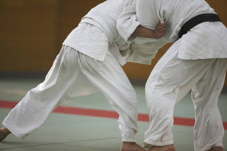 Judo Banco de Imagens