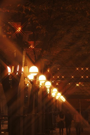 onboard: Street lights