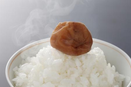 Rice and umeboshi Zdjęcie Seryjne