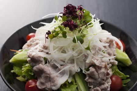 ton: Ton shabu salad Stock Photo