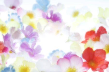 花の背景 写真素材 - 43502483