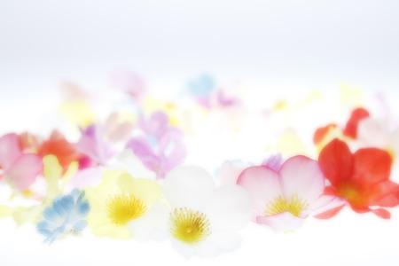 花の背景 写真素材 - 43502525