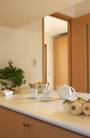 kitchen counter: Kitchen counter