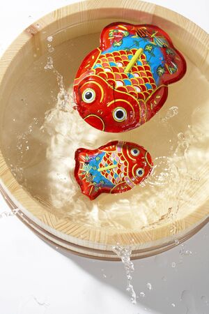 tin: Tin goldfish