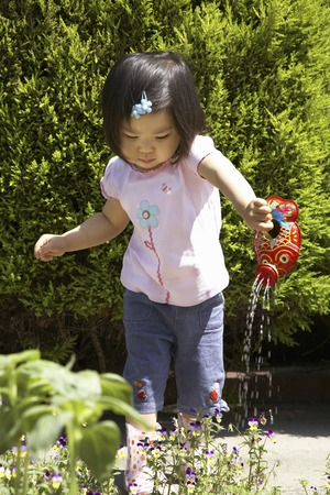 watered: Children have watered the flowers Stock Photo