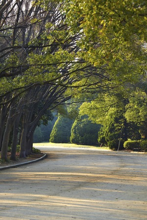 promenade: Osaka Castle Park Promenade