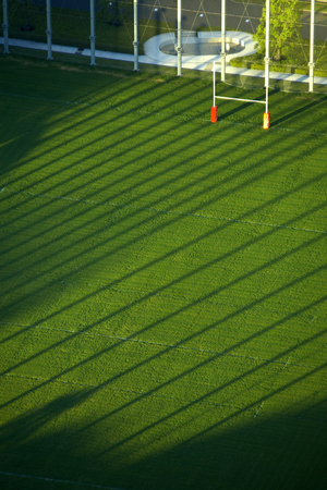 rugby field: Rugby field grass