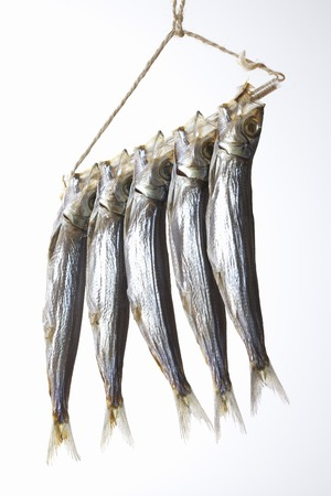 stockfish: Stockfish