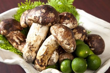 expensive food: Matsutake mushroom Stock Photo