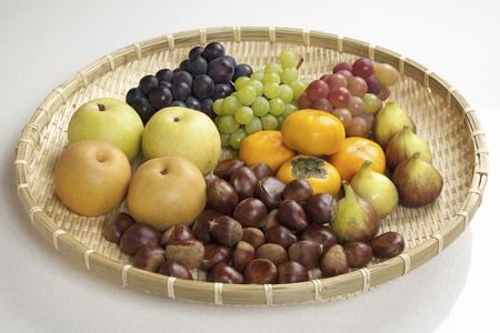 秋のフルーツ コレクション