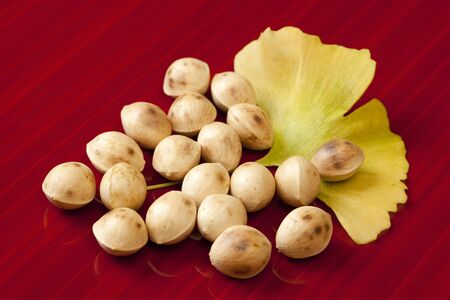 autumn food: Gingko nuts