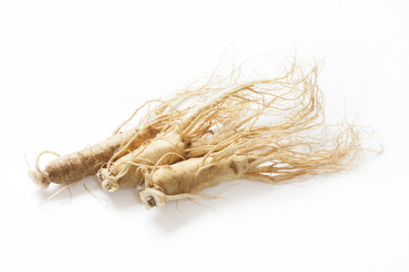 Korean ginseng Stock Photo