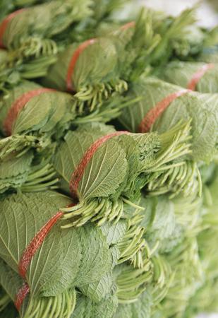 the greens: Greens of perilla
