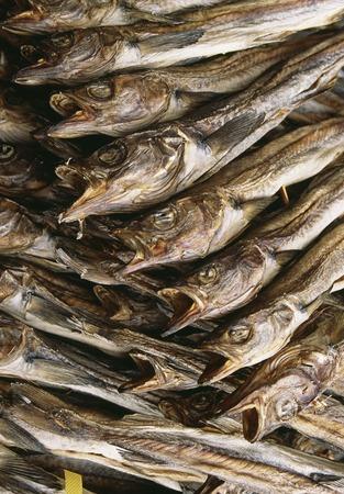 dry provisions: Stockfish