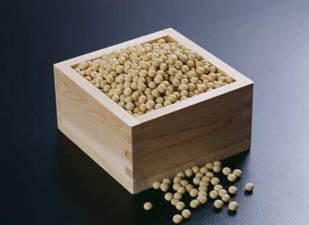 soja: Soja