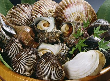shellfish: Assorted shellfish