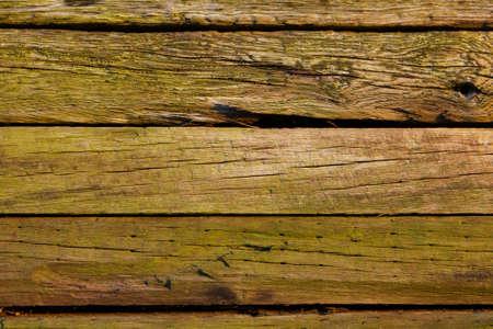 woodgrain: Wood grain