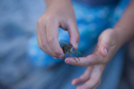 los seres vivos: Las manos del niño con un punto