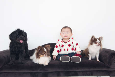 bowwow: Baby girl with 3 dogs