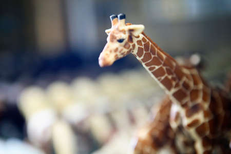 figurines: Giraffe figurines