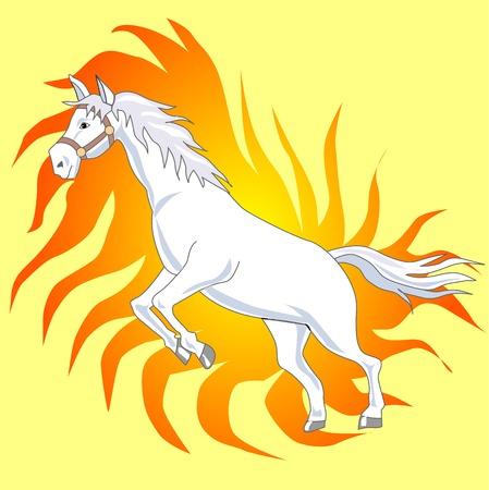mare: Horse Stock Photo