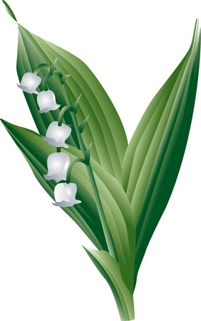 valley: Lily of the Valley