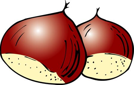 husk: Chestnut