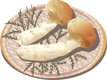 provisions: Matsutake mushroom Stock Photo