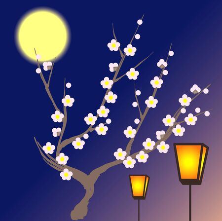 night: Night of plum