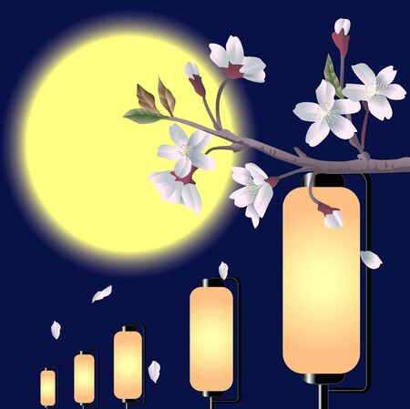cherry blossoms: Cherry blossoms and lanterns